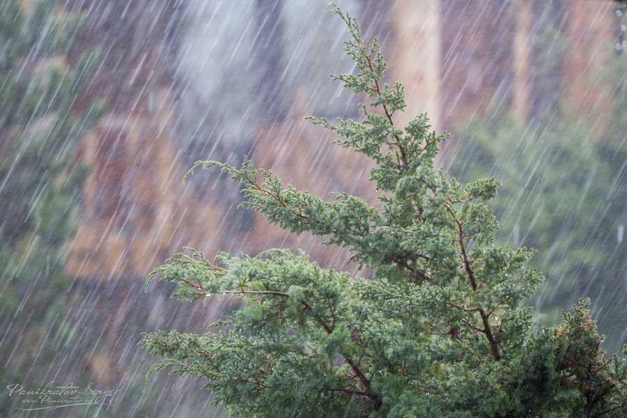 НаДнепропетровщину идет ощутимое  похолодание с необычайным  ветром идождями